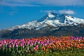 カイセリ エルジェス山