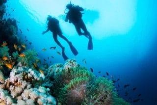 エーゲ海の神秘を探るダイビング