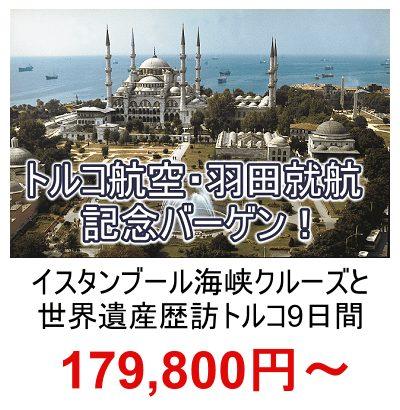 トルコ航空・羽田就航記念バーゲントルコツアー