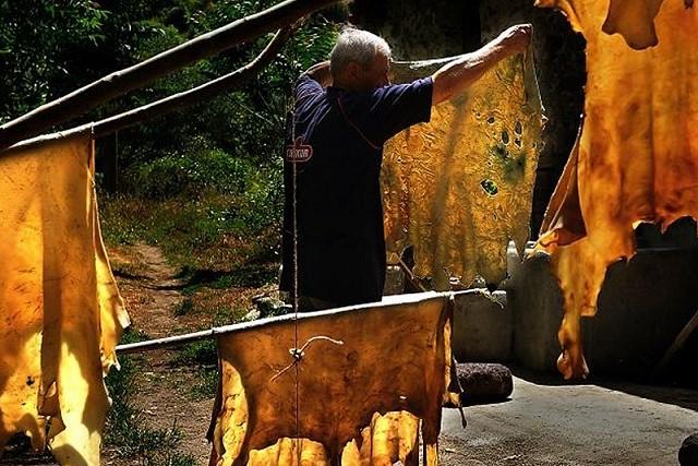 羊皮紙とは?ペルガモン王国で発展した筆写材の特徴や歴史、作り方